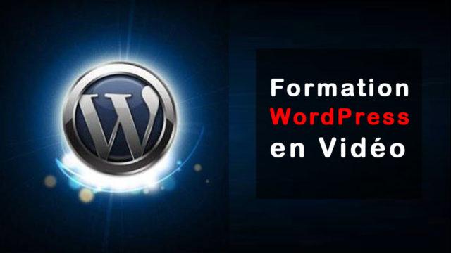 formation worldpress en vidéo vendeur pro