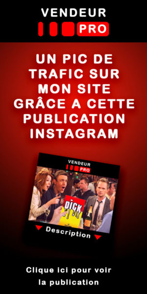 Dick le livre followers Insagram Pinterest Vendeur Pro
