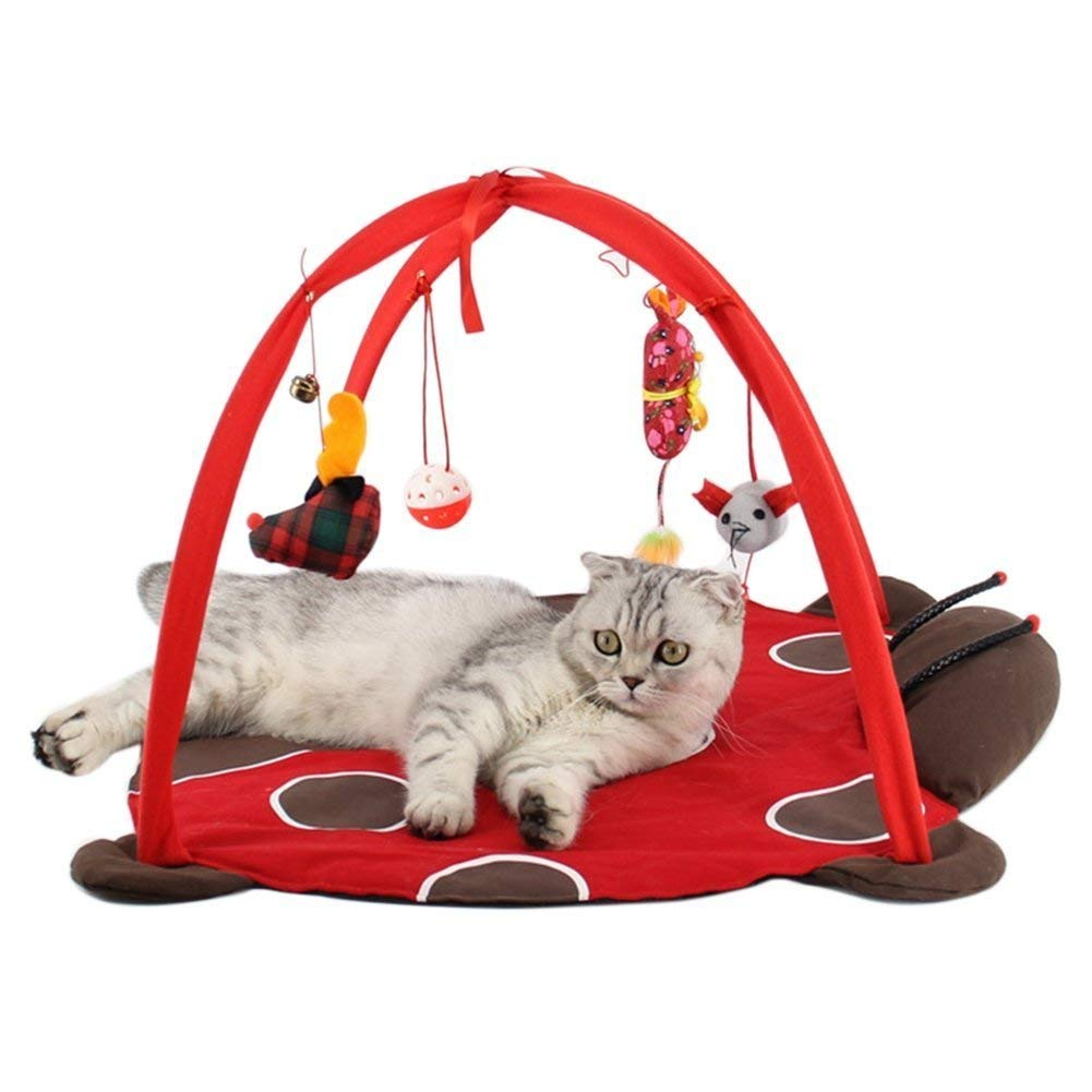 tapis de jeu pour chat avec jouets suspendus vendeur pro. Black Bedroom Furniture Sets. Home Design Ideas