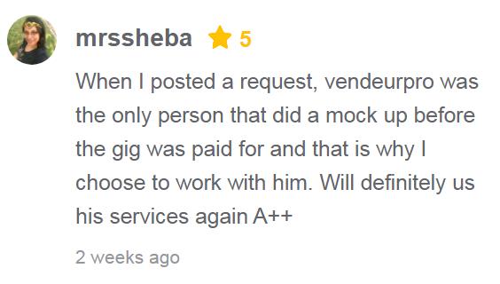 fiverr review vendeur pro
